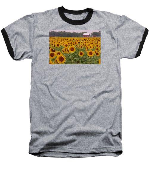 Sunflower Field One Baseball T-Shirt by Karen McKenzie McAdoo