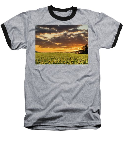 Sunflower Fields Sunset Baseball T-Shirt