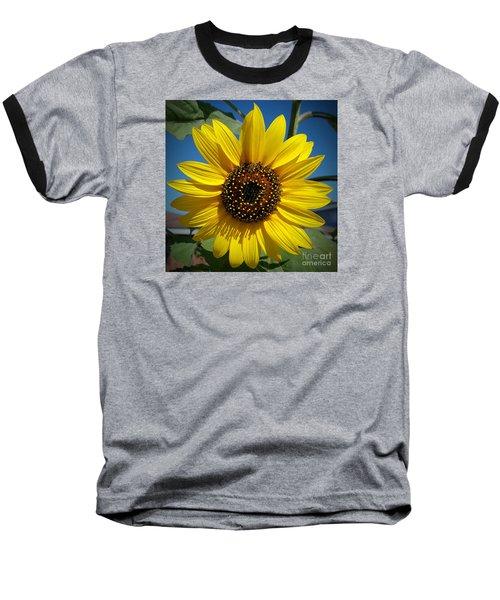Sunflower Glow Baseball T-Shirt by Loriannah Hespe