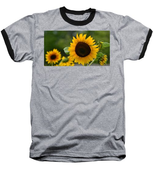 Sunflower Group Baseball T-Shirt