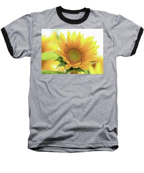 Sunflower In Golden Glow Baseball T-Shirt