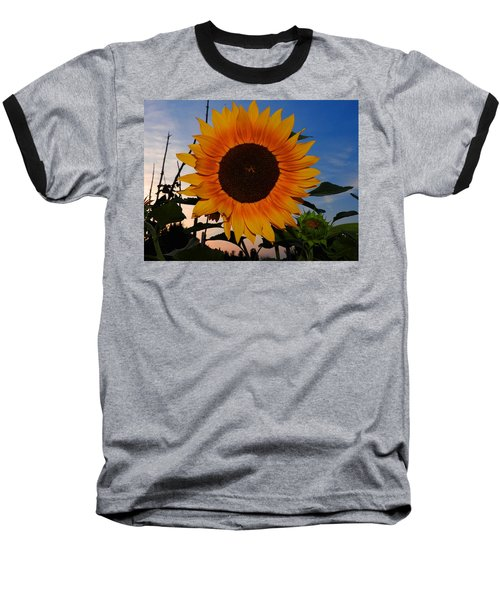 Sunflower In The Evening Baseball T-Shirt