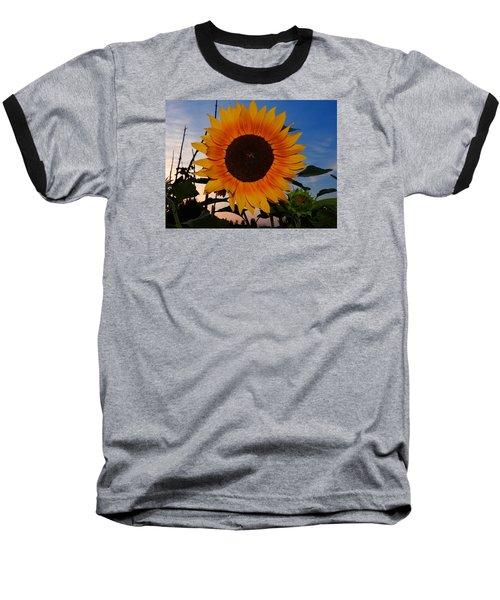 Sunflower In The Evening Baseball T-Shirt