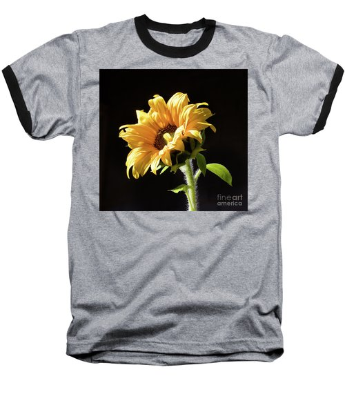 Sunflower Isloated On Black Baseball T-Shirt