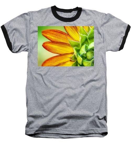 Sunflower Macro 1 Baseball T-Shirt