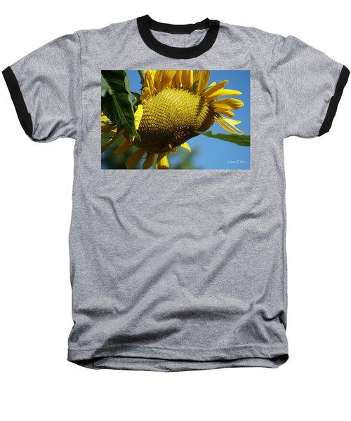 Sunflower, Mammoth With Bees Baseball T-Shirt