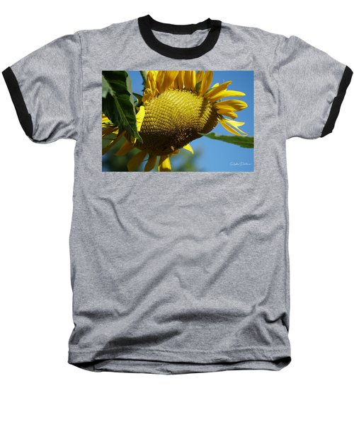 Sunflower, Mammoth With Bees Baseball T-Shirt