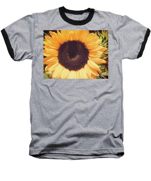 Sunflower Baseball T-Shirt by Scott and Dixie Wiley