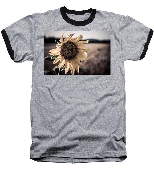 Sunflower Solitude Baseball T-Shirt