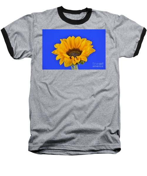Sunflower Sunshine 406-6 Baseball T-Shirt by Ray Shrewsberry