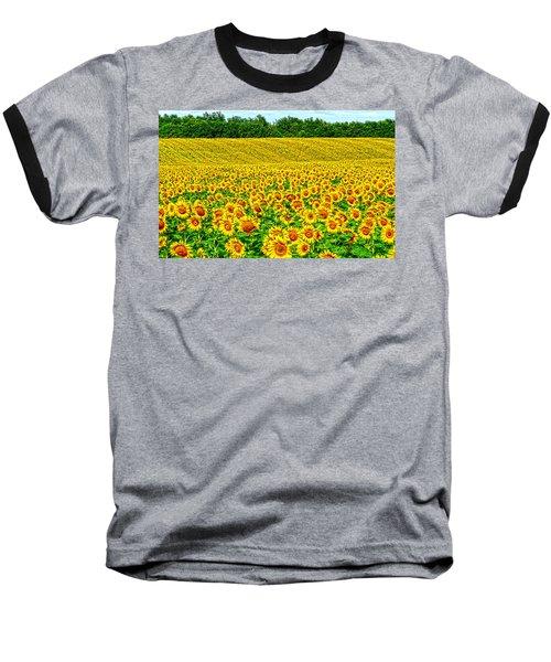 Sunflower Baseball T-Shirt by Thomas M Pikolin