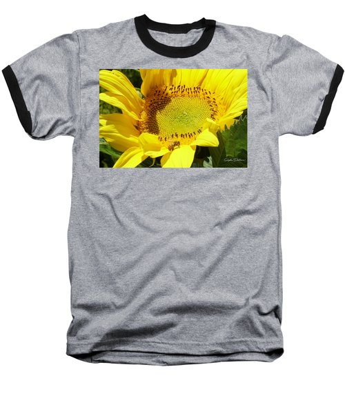 Sunflower With Honeybee Baseball T-Shirt