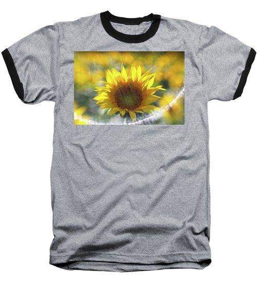 Sunflower With Lens Flare Baseball T-Shirt