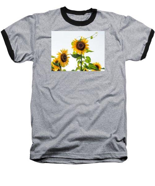 Sunflower With Vine Baseball T-Shirt
