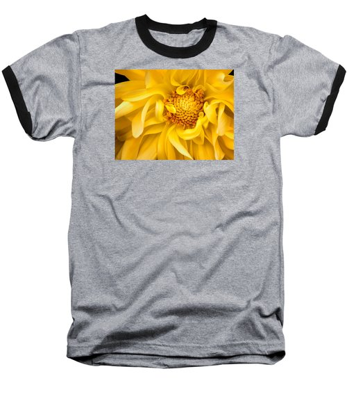 Sunflower Yellow Baseball T-Shirt