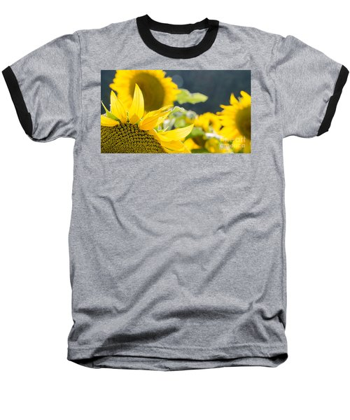 Sunflowers 14 Baseball T-Shirt