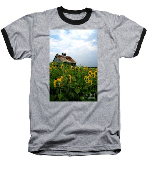 Sunflowers Along Rt 6 Baseball T-Shirt