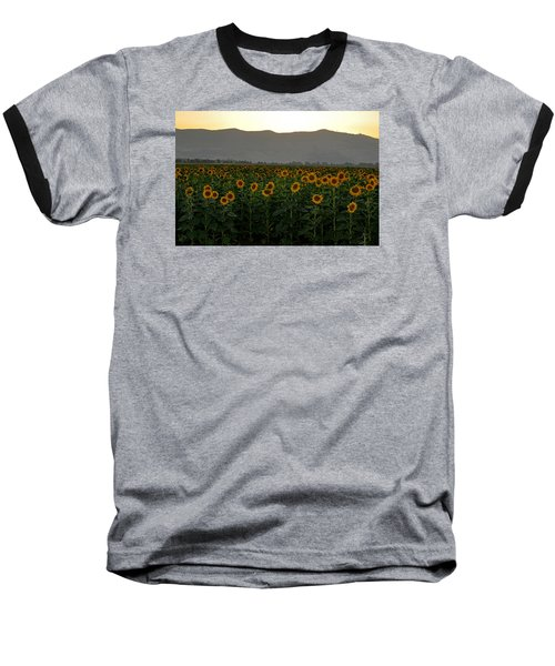 Baseball T-Shirt featuring the photograph Sunflowers by Dubi Roman