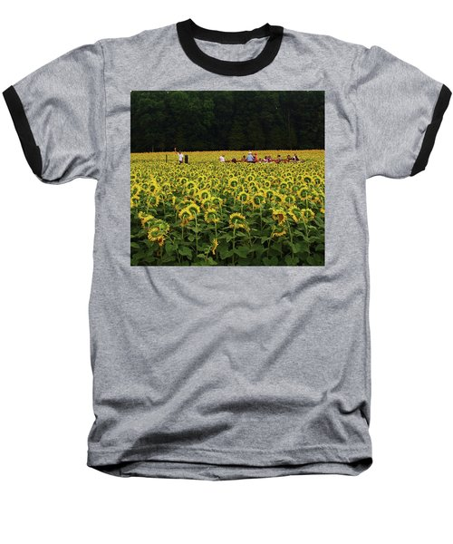 Sunflowers Everywhere Baseball T-Shirt by John Scates