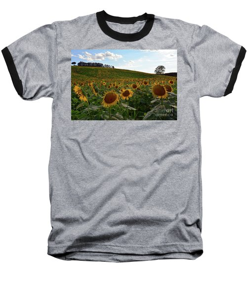 Sunflowers Fields  Baseball T-Shirt