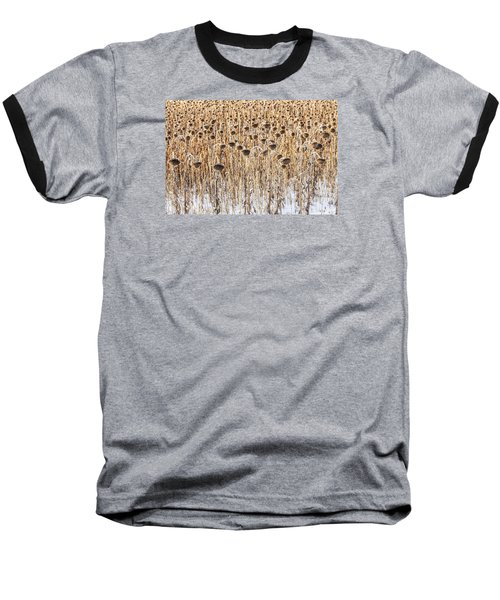 Sunflowers In Snow Baseball T-Shirt