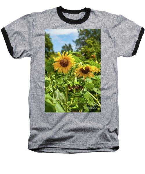 Sunflowers In Sunshine Baseball T-Shirt