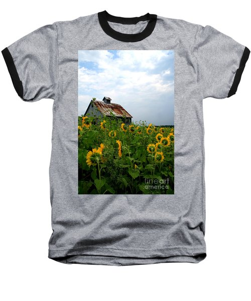 Sunflowers Rt 6 Baseball T-Shirt