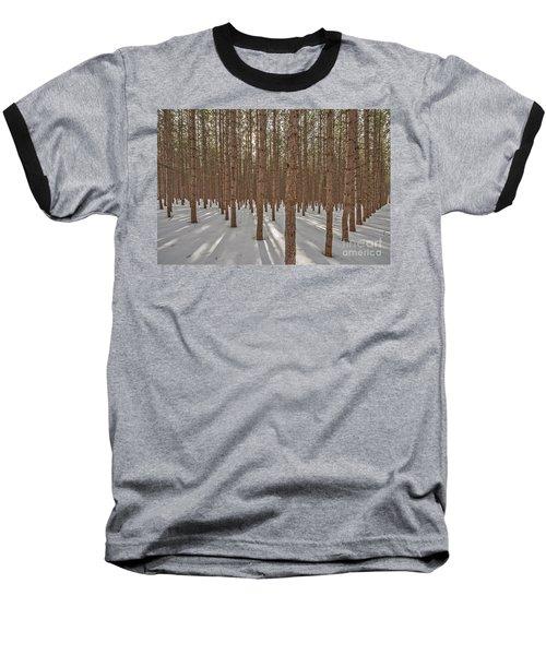 Sunlight Filtering Through A Pine Forest Baseball T-Shirt