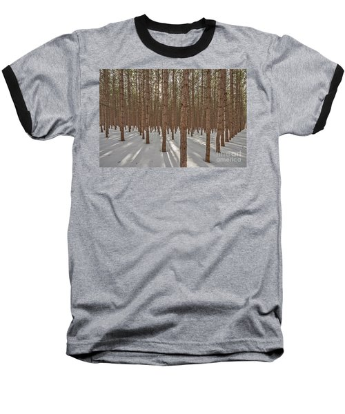 Sunlight Filtering Through A Pine Forest Baseball T-Shirt