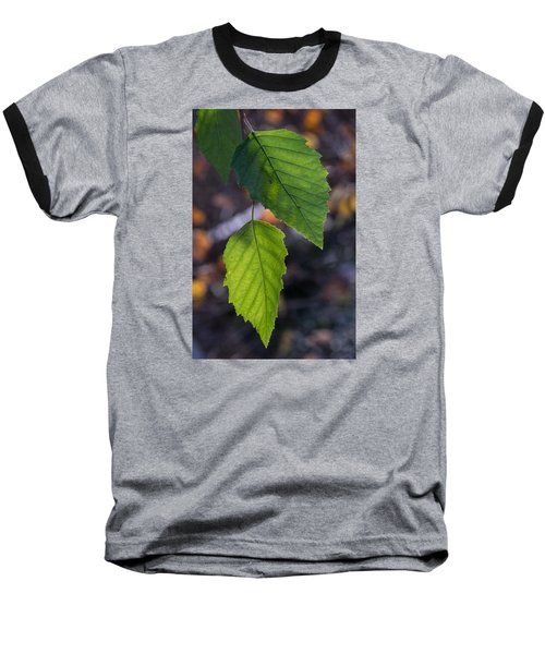 Sunlight Through Birch Leaf Branch Baseball T-Shirt
