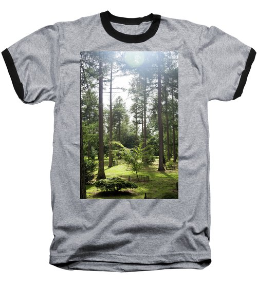 Sunlight Through The Trees Baseball T-Shirt by Scott Lyons