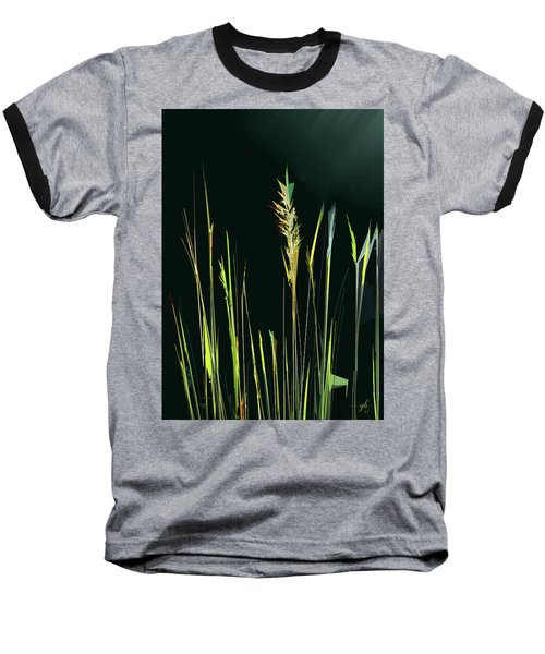 Sunlit Grasses Baseball T-Shirt