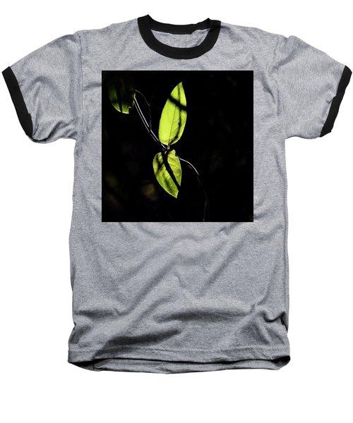 Sunlit Leaves Baseball T-Shirt by Jay Stockhaus