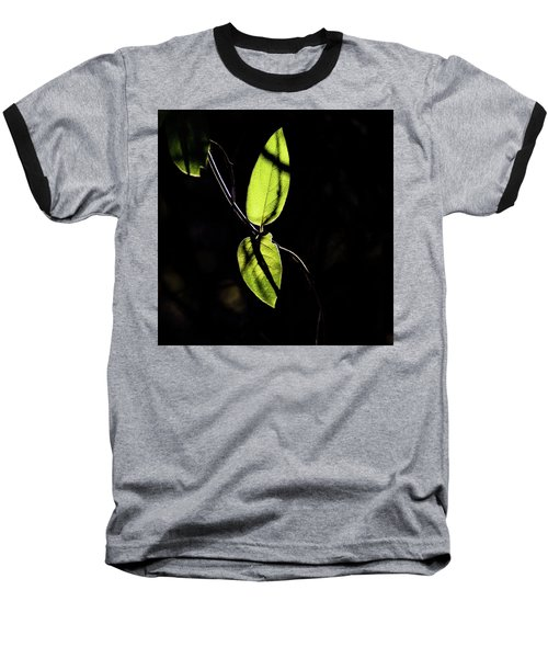 Sunlit Leaves Baseball T-Shirt