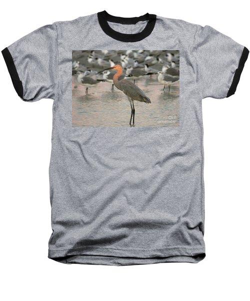 Sunlit Reddish Egret Baseball T-Shirt
