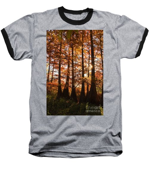 Baseball T-Shirt featuring the photograph Sunlit Trees At Lake Murray by Tamyra Ayles