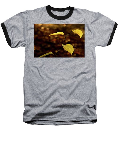 Sunlite Greenbriar Stem Beside The Stream Baseball T-Shirt