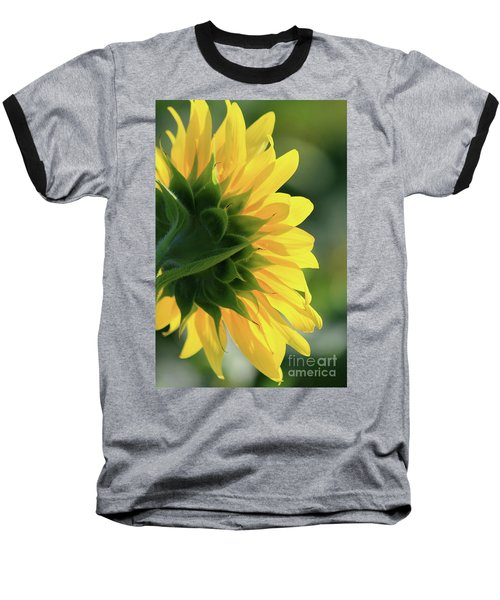 Sunlite Sunflower Baseball T-Shirt