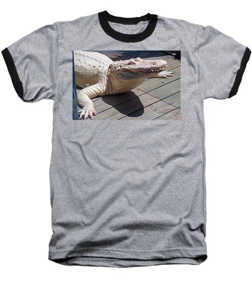 Sunning Albino Alligator Baseball T-Shirt