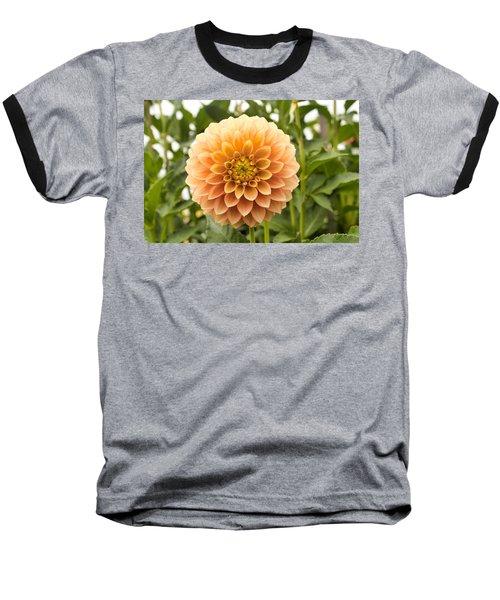 Sunny Dahlia Baseball T-Shirt