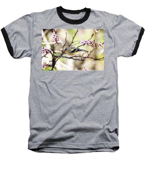 Sunny Days Baseball T-Shirt
