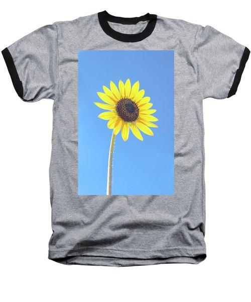 Sunny Delight Baseball T-Shirt