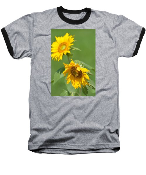 Sunny Side Up 1 Baseball T-Shirt by Teresa Tilley