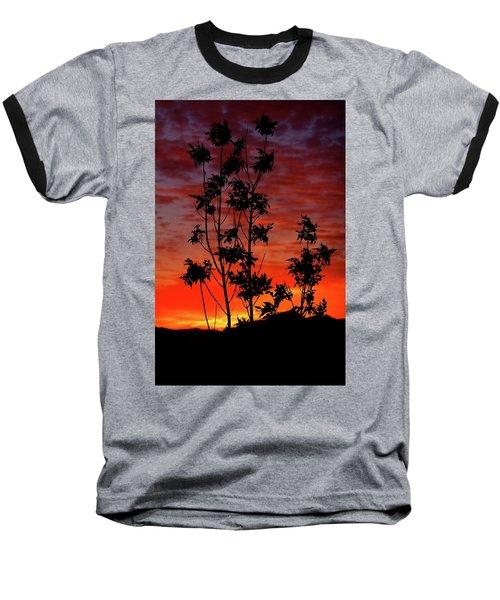Sunrise Magic Baseball T-Shirt by Paul Marto