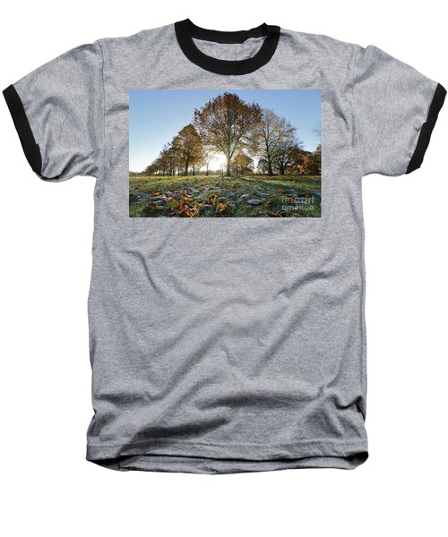 Sunrise Through Lime Trees Baseball T-Shirt