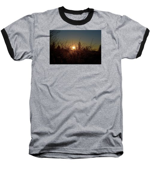 Sunrise Thru The Brush Baseball T-Shirt by Dacia Doroff