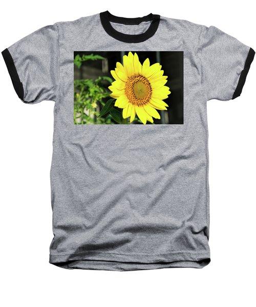 Sun's Up Baseball T-Shirt
