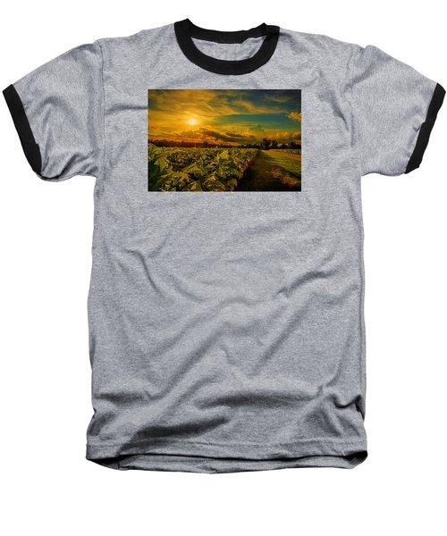 Sunset In A North Carolina Tobacco Field  Baseball T-Shirt
