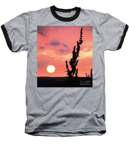 Sunset Baseball T-Shirt by Raymond Earley