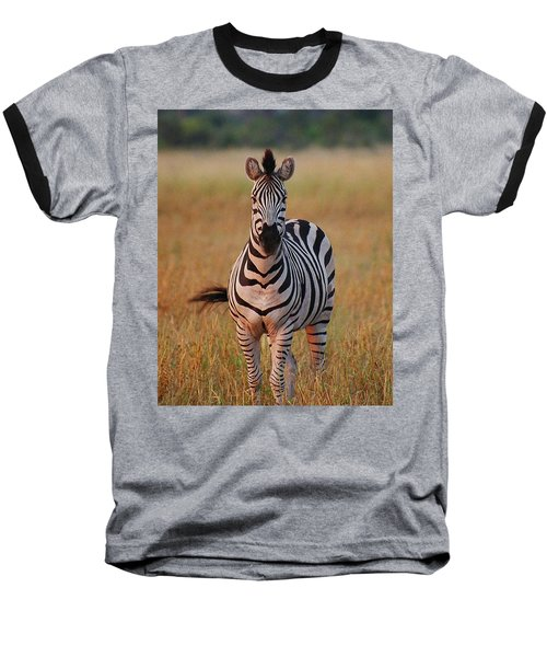 Sunset Zebra Baseball T-Shirt